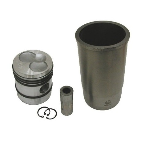 Set motor 25/31-112 718201R96