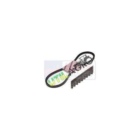 Curea AR51059